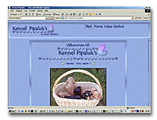Pipaluk's Kennel